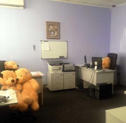 Обычный рабочий день - вместо сотрудников на работу вышли медведи